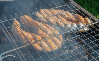 Menu de Peixe Grelhado ou Porco Preto por 15€ na Amadora ao Almoço!