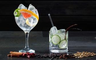 ¡Taller y Cata de Gin Tonic's por 15€ en Latina!