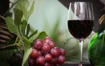 Menu Vegetariano completo com vinho para 2 pessoas por 32€, no Príncipe Real!