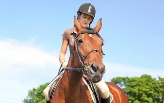 ¡Curso de equitación en Pinto por 52€ al mes!