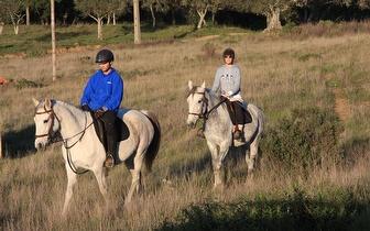 Passeio a cavalo pela Serra de Grândola desde 20€/pessoa!