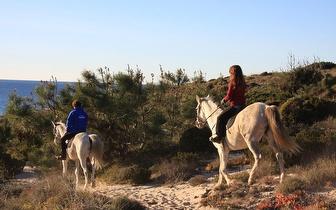 Passeio a cavalo pela Serra de Grândola com degustação de vinhos desde 28€/pessoa!