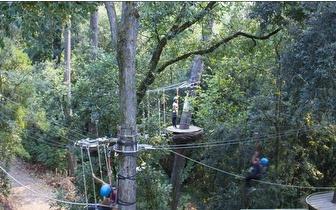 Circuito de Arborismo por 15€/ pessoa no Jardim Botânico de Coimbra