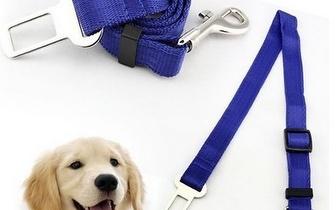 Cinto de Segurança para cães por 9€ com entregas em todo o País!