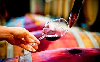 Workshop Vínico por 18€/pessoa em Campo Maior!