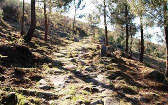 Percurso Pedestre por 16€/pessoa no Soajo ou em Gondoriz!