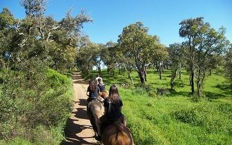 Passeio a cavalo por 16€/pessoa em Cercal do Alentejo!