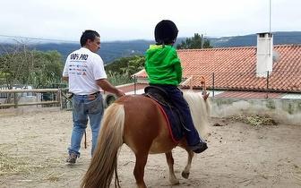Passeio num mini Pónei por apenas 6€/criança em Sintra!