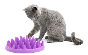 Nhecos, Necho Alimentador e Brinquedo interativo para gatos por 17€ com entregas em todo o país!