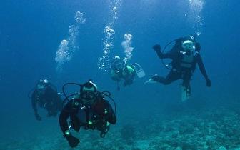 Mergulhe este fim-de-semana no Mar por 50€