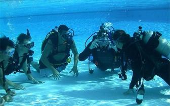 Batismo de Mergulho por apenas 25€