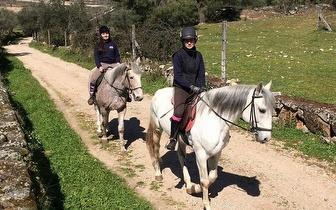 Escapada Romântica: Alojamento com Pequeno-Almoço + Passeio a Cavalo para 2 Pessoas por 79€ na Guarda!