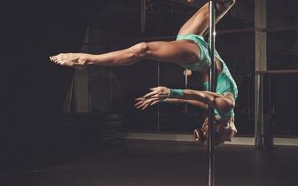 Workshop de Dança 2 Horas: Pole Dance, Chair Dance e Floor Work por 14,90€ em Loures!