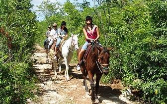 Passeio a Cavalo para 2 pessoas durante 1h30, apenas 17€!