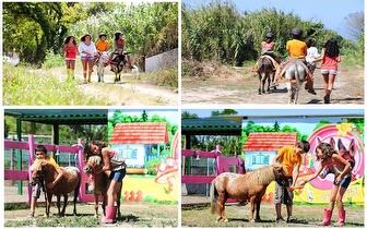 Passeio de Burro para 2 crianças durante 1h à aldeia do Magoito, apenas 10€!
