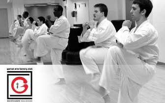 Venha praticar Karaté Goju-Ryu, durante 3 Meses, para todas as idades, apenas 75€!