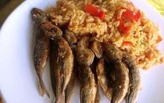 Menu de Cozinha Típica Portuguesa em Benfica: 9€!