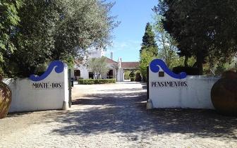 2 Noites de Alojamento para 2 Pessoas + Garrafa espumante por 69€! Venha conhecer a beleza de Estremoz...