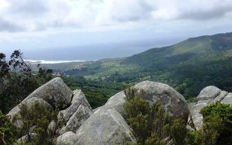 Percurso + Piquenique para 2 pessoas em Sintra: Estrada das Sequóias e Tapada de Monserrate por 59€!