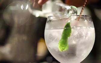 6 Copos para Gin apenas 17€ | Entrega em Portugal Continental!